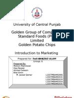 Marketing Report on Golden Chips Pakistan
