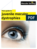 Accss Guide to JMD