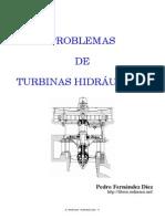 Problemario de Turbinas Hidraulicas