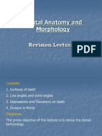 Dental Anatomy Lecture