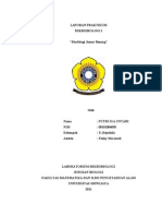 208931619 Praktikum Mikrobiologi Morfologi Jamur Benang