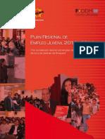 Programa Conjunto JEM PREJ Arequipa 2011 2014