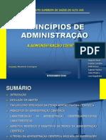 Principiosdeadministrao 130916230206 Phpapp02 (1)