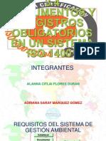 3.4 y 3.5 Documentos y Registros Obligatorios en Un Sistema Iso 14001