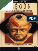 117850200 Elegun Altair Togun Livro PDF