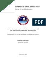 Tesis de Licenciatura PUCP, Facultad de CCSS- Antropología, 2009. María Dulce Burga Hidalgo