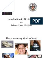 Introduction to Dental Terms 2