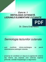 Curs 1 Leziuni Elementare
