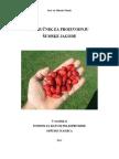 Priručnik Za Proizvodnju Šumske Jagode