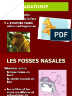 Cavités Nasosinusiennes (HORGA DANA-ALEXANDRA's Conflicted Copy 2014-04-30)