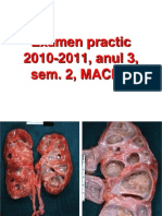 Ro Ex Practic Anul III Sem 2 2010-2011 MACRO Final
