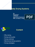 Paddy Drying