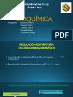 diapositivas BIOQUIMICA 11