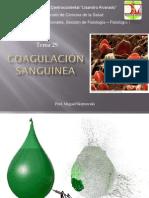 Tema 29.pdf