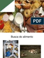 Tipos de Alimentos2