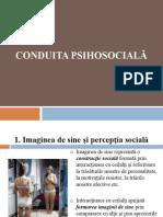 conduita_psihosociala