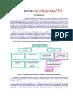 Polímeros Document
