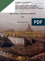 Repertoriu Arheologic Hunedoara Mic