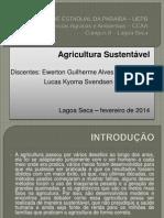 Agricultura sustentavel