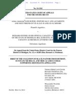 Coalition of Black Pastors Amicus Brief in DeBoer v Snyder (Michigan marriage case)