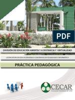 Practica Pedagogica I-practica Pedagogica i