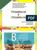 _seminário B5 e B6 Final