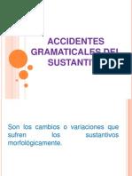 Accidentes Gramaticales Del Sustantivo