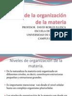 Niveles de Organización d.r.