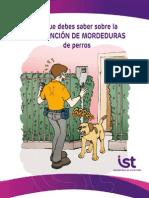 Lo Que Debes Saber Sobre La Prevención de Mordeduras de Perros