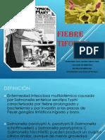 Fiebre Tifoidea 2014