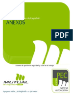 Anexos Programa PEC Autogestion