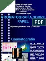 Cromatografia sobre Papel.pptx