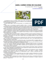 96-corderos_pesados