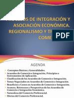 Procesos de integración y asociación económica.pdf