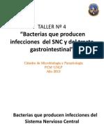 Taller N 4 Bacterias Que Producen Infecciones Del SNC y Tracto Gastrointestinal