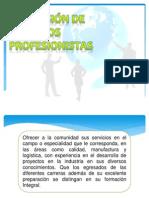 La Mision de Los Profesionistas