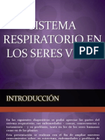 Sistema Respiratorio s.p