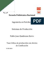 Joao Zambrano - Conificacion Tasa Critica.docx