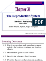 McGrawHill Reproductive System PowerPoint slides