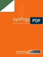 190220134119_synerg_port.pdf