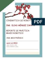 Reporte Brazo1