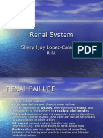 Comprehensive Renal System