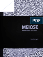 meiose, experimentações em texto e imagem