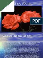 Mediul Social