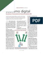 Internet - DNS, Bautismo Digital