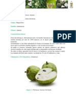 FRUTA chirimoya.pdf