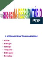 97172054-Sistema-Respiratorio.pptx