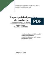 Raport de Practika