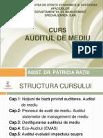 audit curs