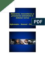 2013NS2_procesare